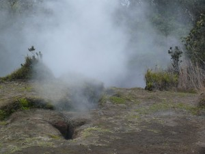 Steam Vents