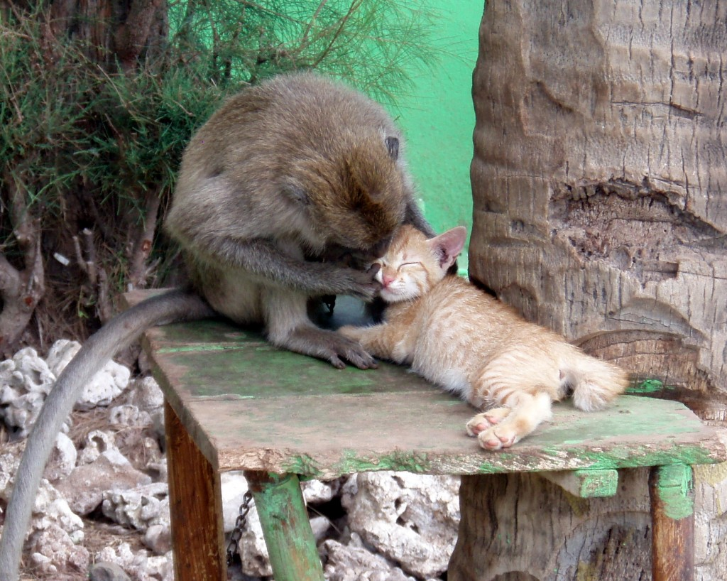 Cheek-Pinching Cute!